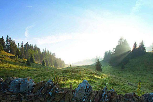 Parc naturel régional Jura vaudois, St-George